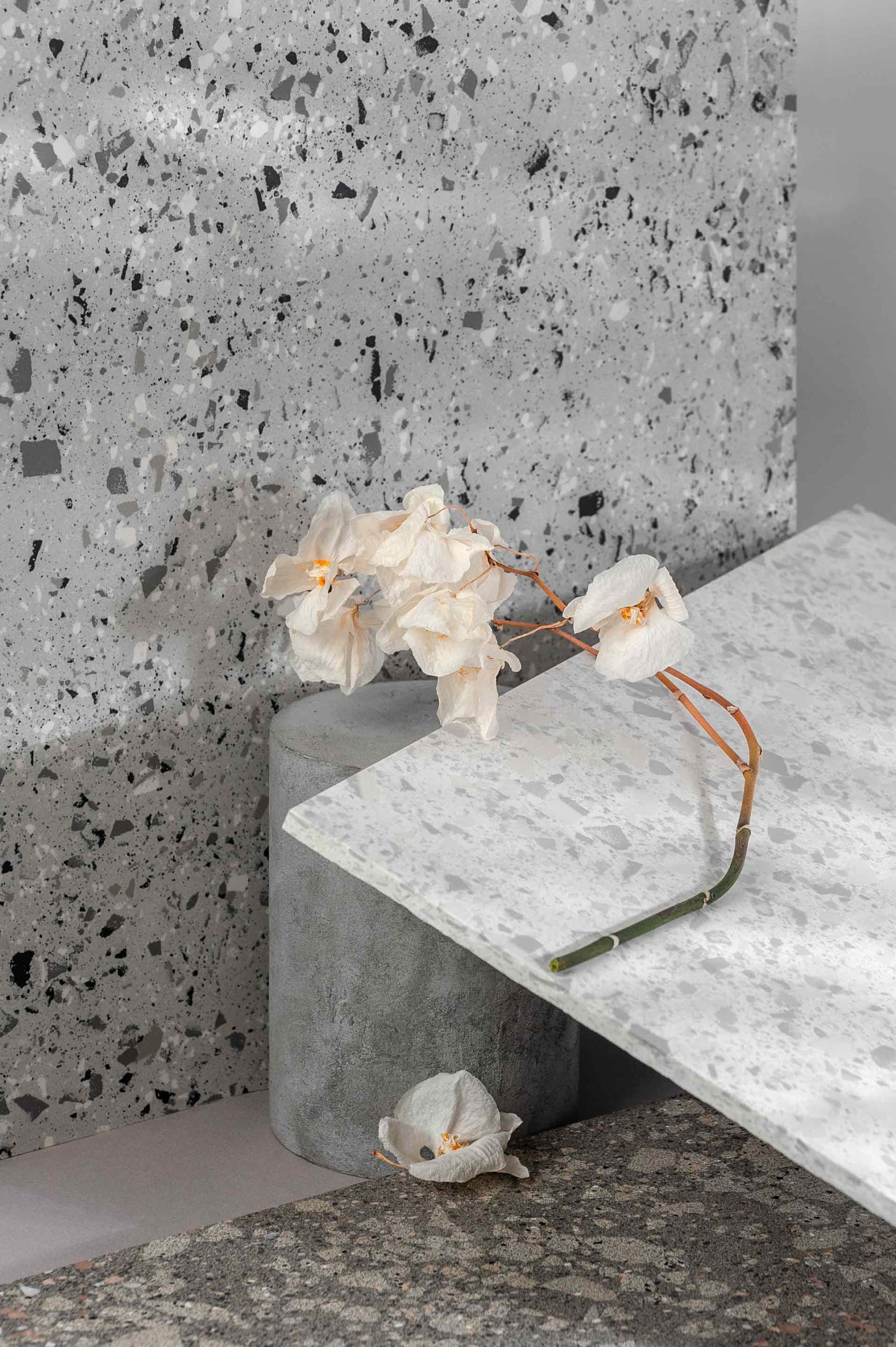 modern-interior-composition-using-various-stone-TBLCP2J-scaled.jpg